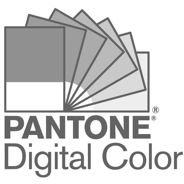限量版 2021 年度代表色色彩指南